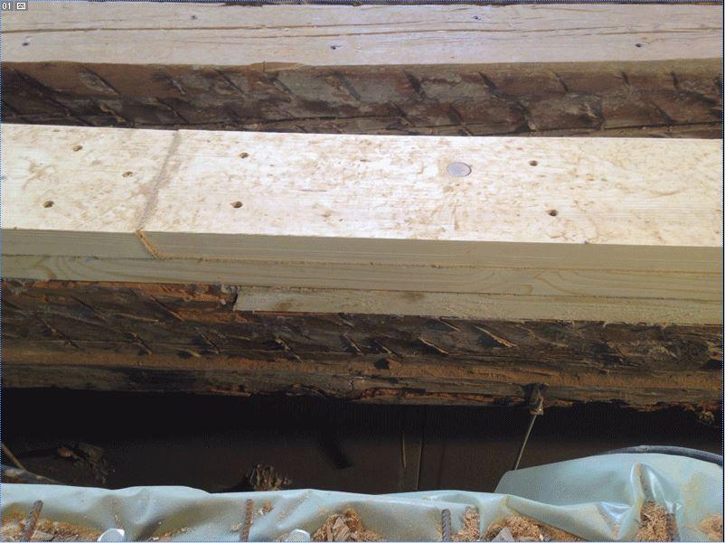 Estructura de madera. Prótesis de madera