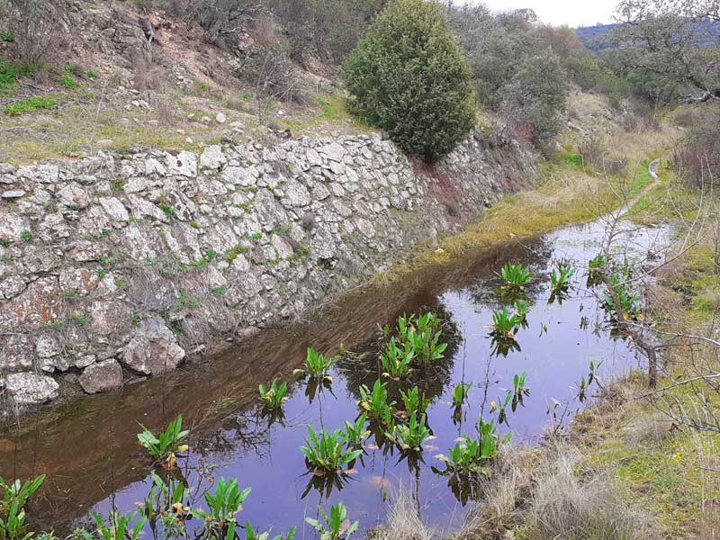 Presa inacabada de El Gasco, el canal